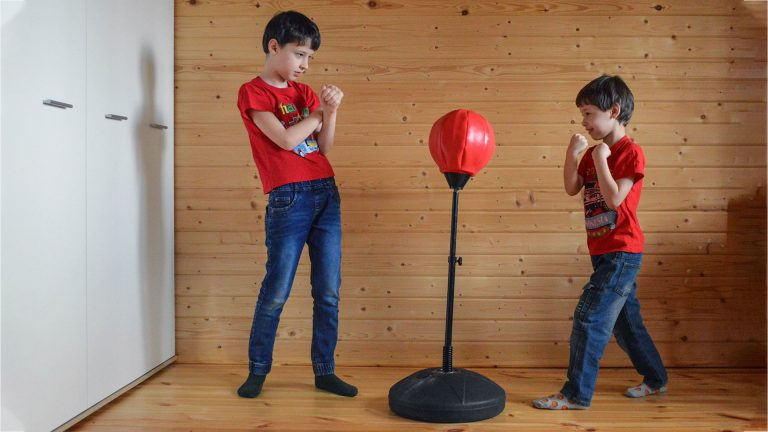 What's The Best Punching Bag for Kids to play and train with?